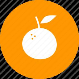 citrus, food, fruit, juicy, orange, tropical icon