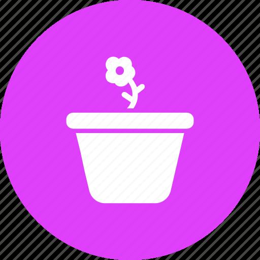 ecology, floral, flower, garden, gardening, plant, pot icon
