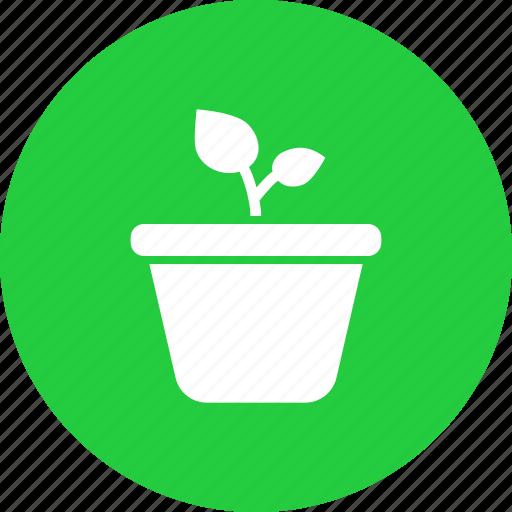 ecology, garden, gardening, grow, leaf, plant, pot icon