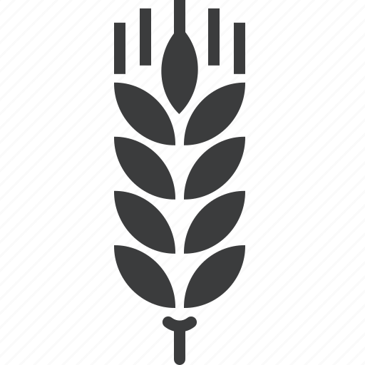 agriculture, crop, cultivate, gluten, grain, harvest, wheat icon