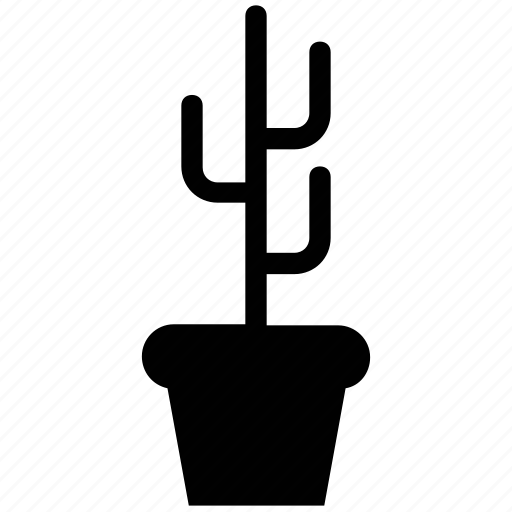 botany, cactus, flowerpot, herbal, houseplant, natural, potted icon