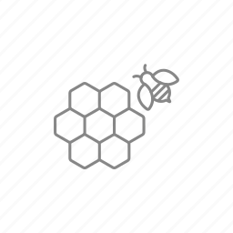 bee, beehive, beekeeping, cell, cellular, honey, honeycomb icon