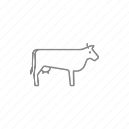 beef, bull, cattle, cow, dairy, livestock, milk icon