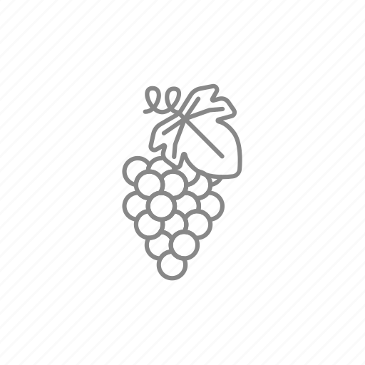 grape, grapevine, purple, ripe, vineyard, wine, winery icon