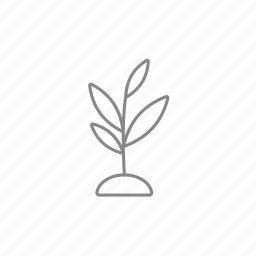 growing, leaf, plant, seedling, soil, sprout, tree icon