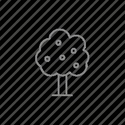 foliage, fruit, garden, gardening, leaf, tree, yield icon
