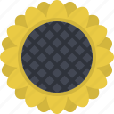 agriculture, crops, farm, field, plant, sunflower, village icon