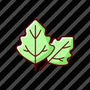 allergen, herb, leaf, plant