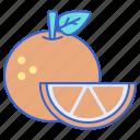 food, fruit, orange icon