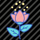 flower, pollen, rose icon