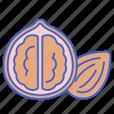 food, hazelnut, nuts icon