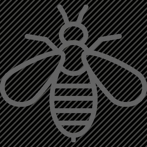alternative, art, bee, medicine, therapy, venom icon