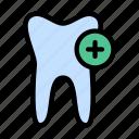 teeth, oral, dental, medical, anatomy