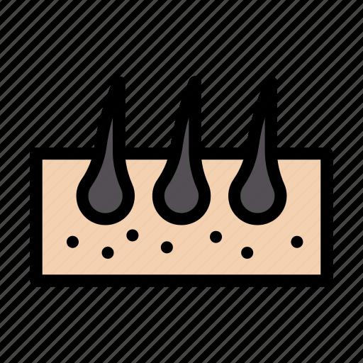 Hair, body, organ, medical, anatomy icon - Download on Iconfinder