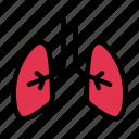 lungs, breath, anatomy, body, medical