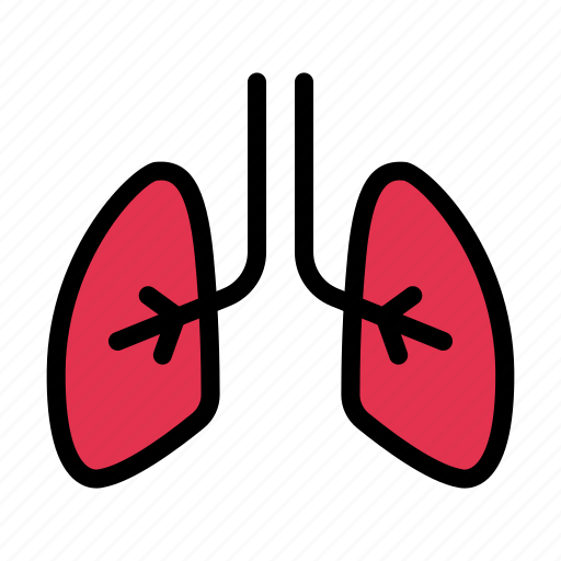 Lungs, breath, anatomy, body, medical icon - Download on Iconfinder