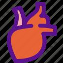 health, hearth, medicine, organ