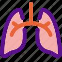 health, lungs, medicine, organ icon