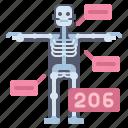 anatomy, bones, health, medical icon