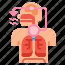 anatomy, cough, medical, reflex