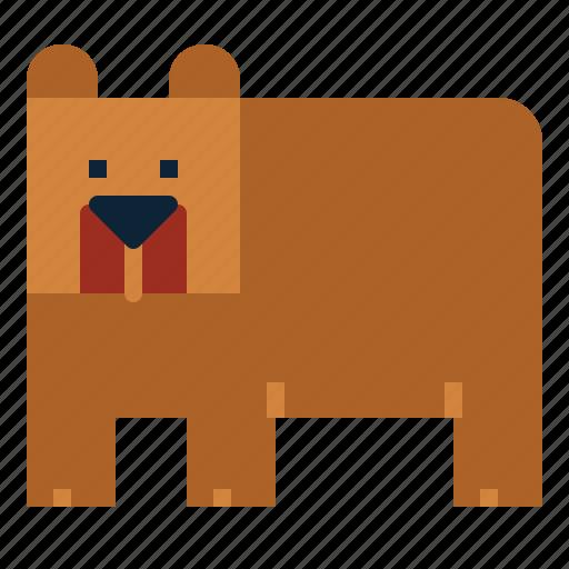 Bear, mammal, wildlife, zoo icon - Download on Iconfinder