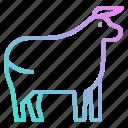 animals, beef, cow, kingdom, mammal icon