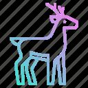 animals, deer, life, wild, zoo icon