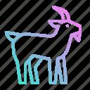 animal, goat, life, wild, zoo icon