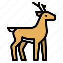 animals, deer, life, wild, zoo icon