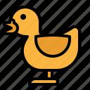 animal, bird, duck, farm, life icon
