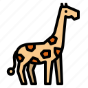 animal, giraffe, life, wild, zoo icon