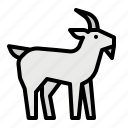animal, goat, life, wild, zoo icon