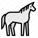 animals, horse, mammal, wild, zoo icon