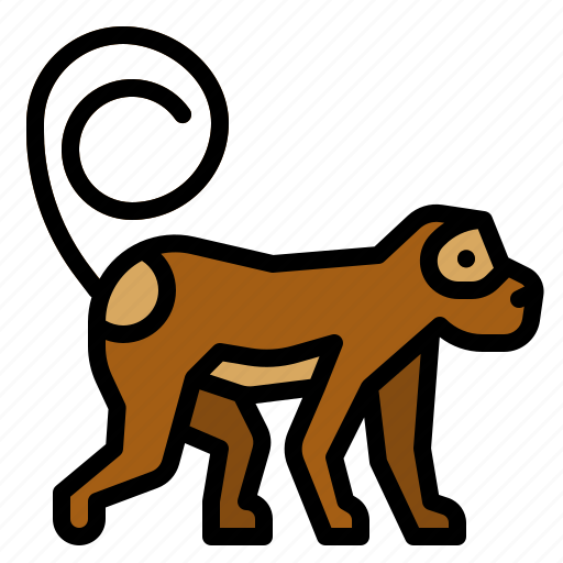 animals, ape, circus, monkey, zoo icon