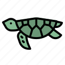 animal, aquarium, sea, turtle, zoo icon