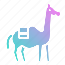 animal, camel, desert, kingdom, zoo icon