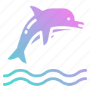 animal, animals, aquarium, dolphin, kingdom icon