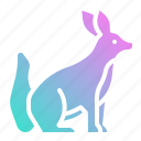 animal, animals, fox, kingdom, mammal, zoo icon