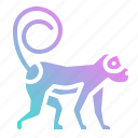animal, animals, ape, circus, monkey, zoo icon
