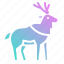 animal, animals, deer, mammal, moose, zoo icon