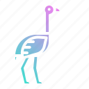 animal, bird, fast, ostrich, wildlife, zoo icon