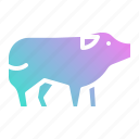 animal, farm, food, mammal, pig icon