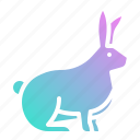 animal, animals, bunny, rabbit, wild, zoo icon