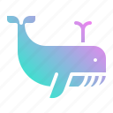 animal, animals, whale, wildlife, zoo icon