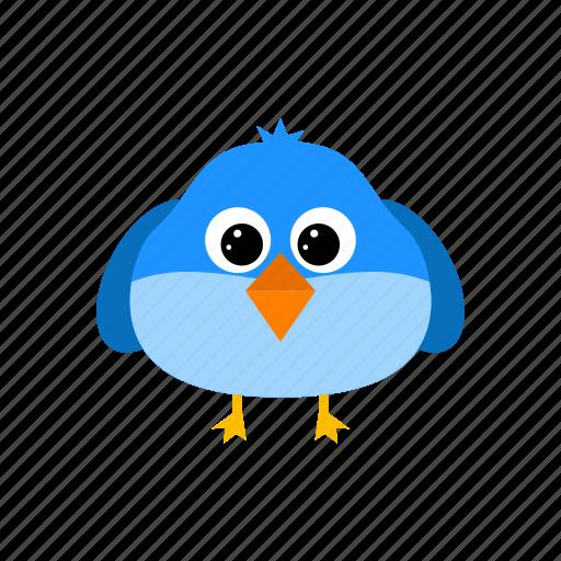 animal, bird, flying, pet icon