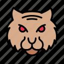 lion, animal, wild, zoo, face