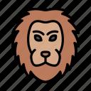 lion, king, animal, wild, zoo