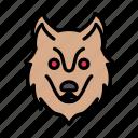 wolf, animal, zoo, wild, face