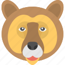 animal face, bear face, brown bear, face of bear, grizzling bear icon