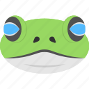 animal face, animated frog, blue eyed frog, frog face, smiling frog icon